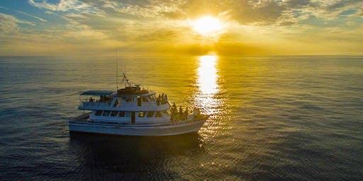 Summer Cruise in Newport Beach
