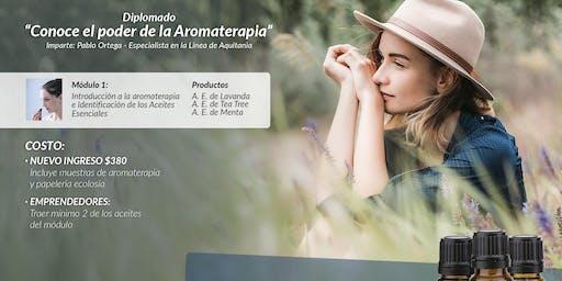 Diplomado de aromaterapia