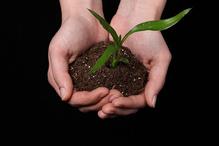 Imagen de Curso de Buenas Prácticas Agrícolas según protocolo GLOBALG.A.P.