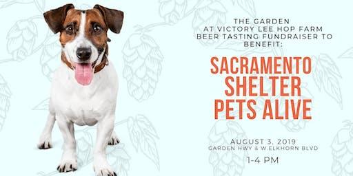 Beers for Sacramento Shelter Pets Alive