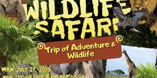 Wild Animal Safari