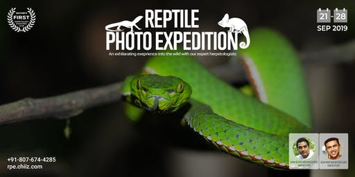 Reptile Photo Expedtion