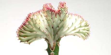 PRICK presents: Cactus Grafting workshop tickets