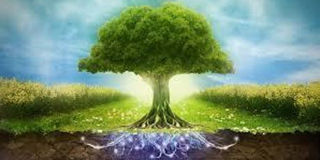 Create Your Tree of Life - Creative Therapy Workshop tickets