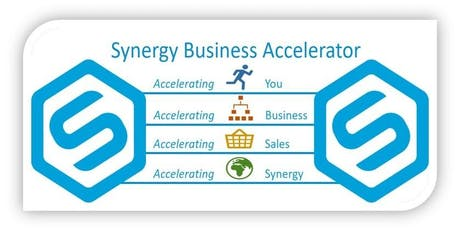 Copy of Synergy Business Accelerator Academy training day - includes a networking lunch.  tickets