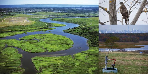 Behind-the-Scenes @ Freshkills Park, World's Largest Landfill-to-Park