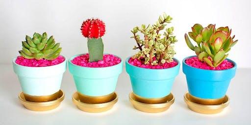 Colorful Succulents Workshop