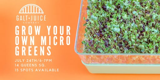 Galt Juice Education: Grow Your Own Microgreens