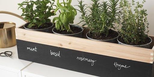 Winter Window Herb Garden Workshop