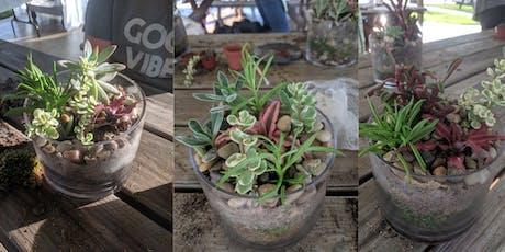 Plants & Pints: Succulent Garden Workshop at Craft Beer tickets