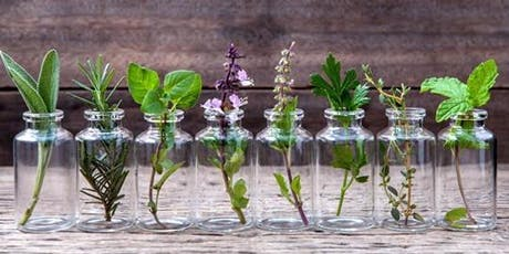 Natural Solutions For Health With Essential Oils - Camden tickets