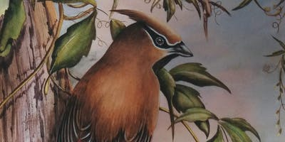 Wildlife Painting with Lynn Mayhew