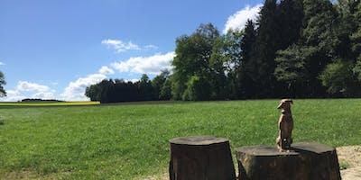 Kompakt-Training Bayern: München - Mammendorf und Umgebung