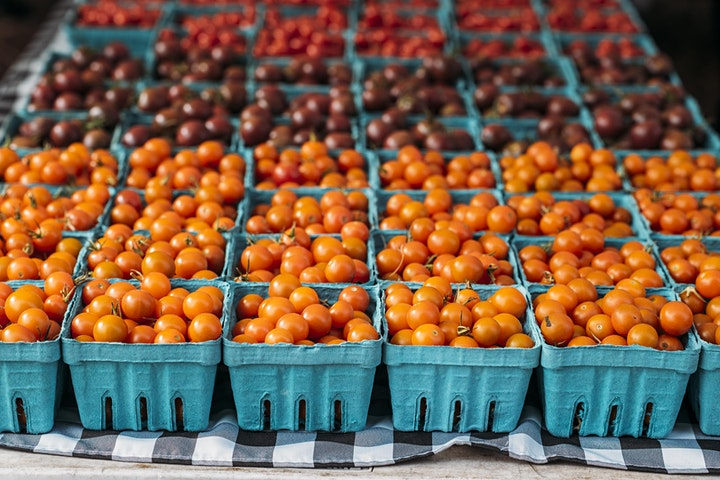 Tour of Green City Market Lincoln Park image