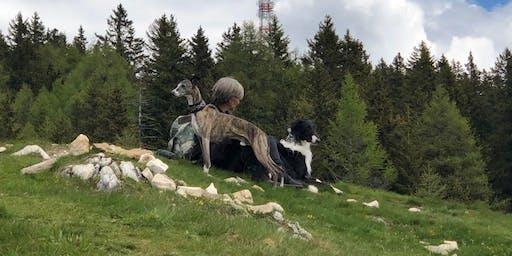 Kompakt-Training Italien: Bozen - Meran - Naturns und Umgebung