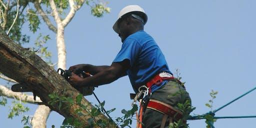 Certified Arborist Training