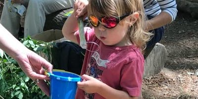 Babes in the Woods 2-5yrs Thursday 5th Sept- 21st Oct  (7weeks)