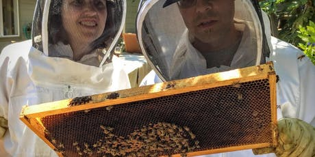 Hive Inspection Class (Beekeeping) tickets