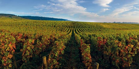 H2Vin Burgundy 2018 En Primeur Private Client Tasting tickets