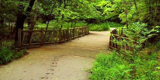 Free Walking Tour - Bridges and Paths: Encountering Nature
