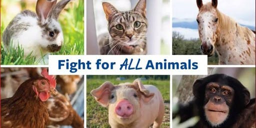 Summit on Advancing Animal Protection Through Local Ordinances ~