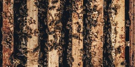 The Honey Harvest at Gorman Heritage Farm tickets