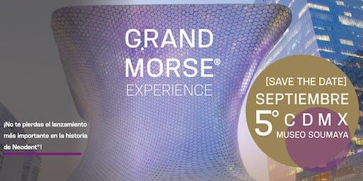 Grand Morse® Experience