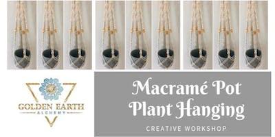 Macramé Pot Plant Hanging Workshop