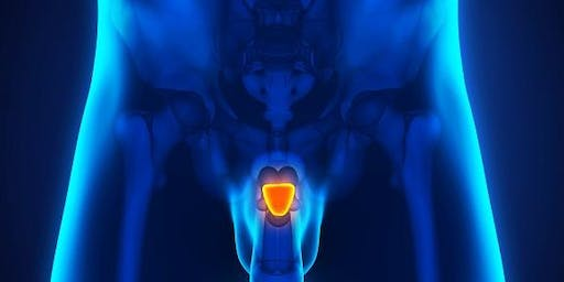 Prostate:  What Men Should know