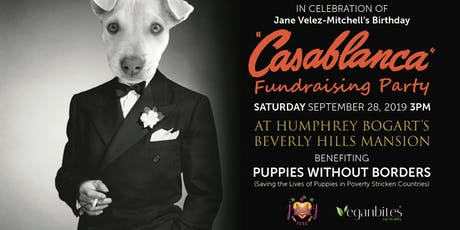 Puppies Without Borders Casablanca Fundraiser tickets