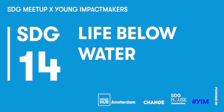 SDG Meetup #10 x Young Impactmakers | SDG 14: Life below Water  tickets