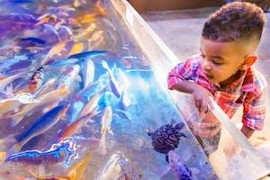San Antonio Aquarium