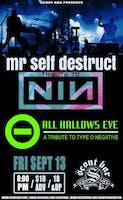 Mr Self Destruct- a tribute to Nine Inch Nails