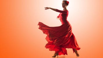 The Art of Flamenco Dinner Show