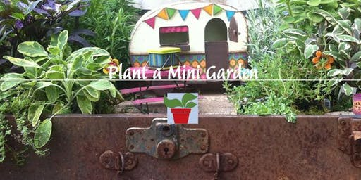 Plant a Mini Garden