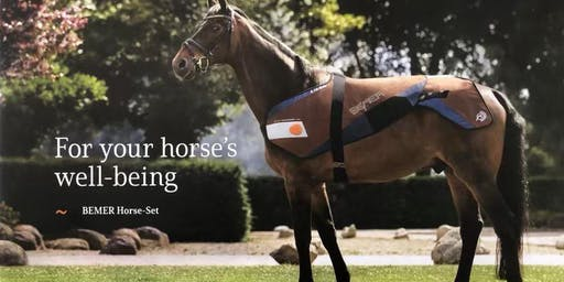 """BEMER """"Empower Your Horse"""""""