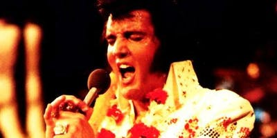 A Tribute The King with the voice of  David Anthony