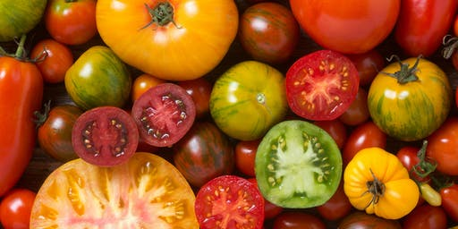 Cooking Healthy On A Budget: Local Tomatoes & Peppers