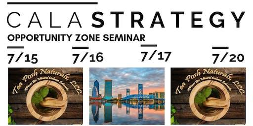 CALA Strategy (Opportunity Zone Seminar)