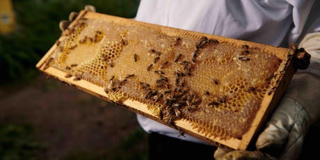 National Honeybee Day with The Honeybee Conservancy & Zarbees Naturals! tickets