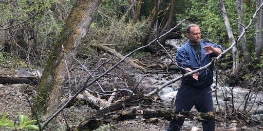 Chi Hike with Tai Chi Easy,  Qigong, Yoga and Meditation/Mindfulness