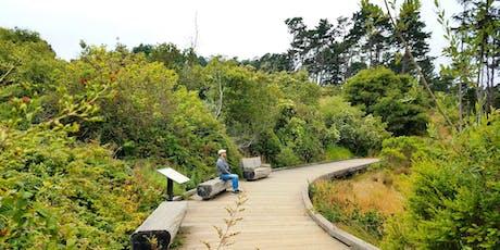 Nature Meditation Walk tickets