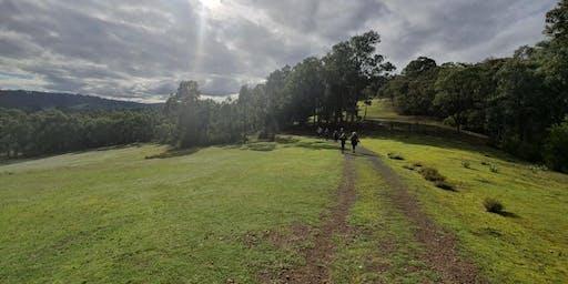Walk for Wellness - Warrandyte State Park Explore