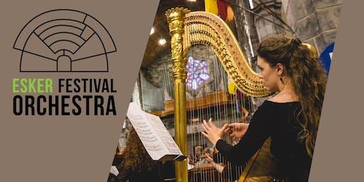 Esker Festival Orchestra in Cork – 2019 Tour