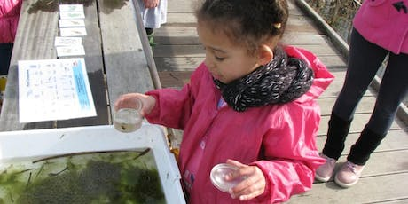 RSPB Toddler Fabulous Fish tickets