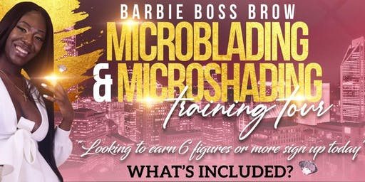 Microblading & Microshading/Ombre Brow 2 in 1 Training Course