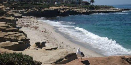 La Jolla Coastal & Village Walkabout tickets