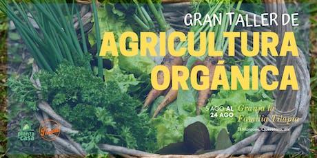 Gran taller de agricultura orgánica entradas