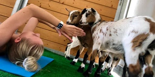 Goat Yoga Experience Saturday July 20th
