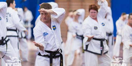 ITFA International Instructor Course & Black Belt Grading September 2019 (Taekwon-Do)